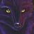Fox Angel Dark